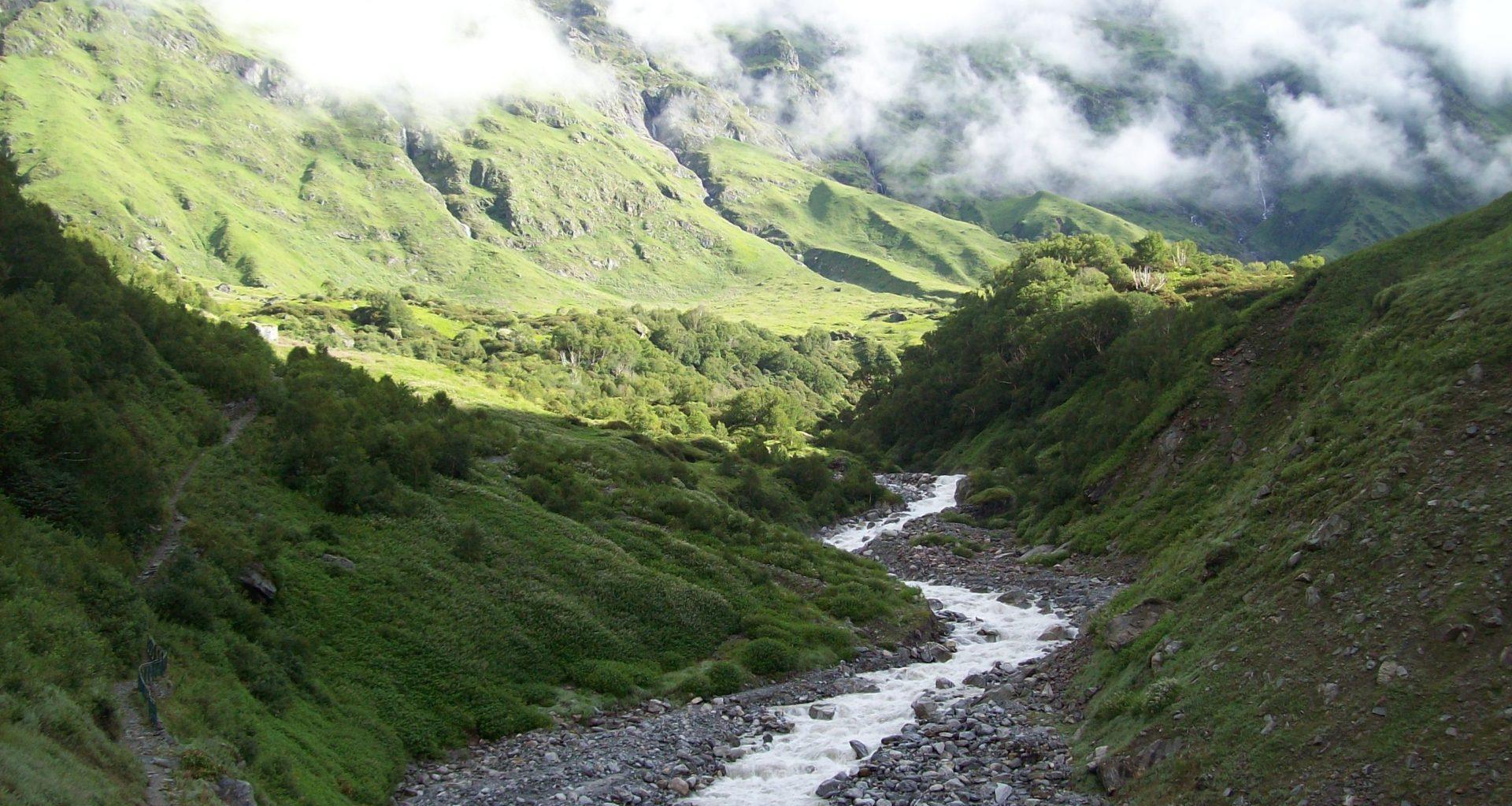 Teaching the Himalayan Tradition